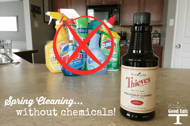Free Printable: Top 12 Uses for Young Living Thieves Household Cleaner