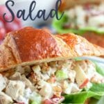 Chicken Salad recipe with grapes, apples, celery, and pecans that comes together quickly for a filling lunch or snack. Deliciously crunchy and creamy, this chicken salad recipe can be served with bread, croissants, or lettuce wraps.